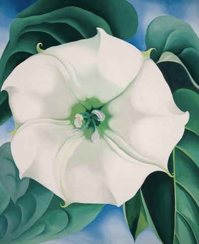 Jimson Weed, White Flower No. 1 by Georgia O'Keeffe