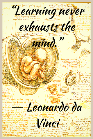 """Learning never exhausts the mind."" ― Leonardo da Vinci"