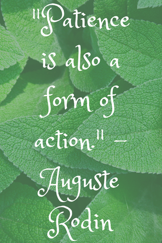 """Patience is also a form of action."" - Auguste Rodin"