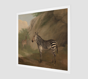 Zebra by Jacques Laurent Agasse