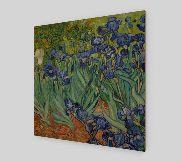 Irises Vincent by Vincent Van Gogh [Fine Art Reproductions Sale]