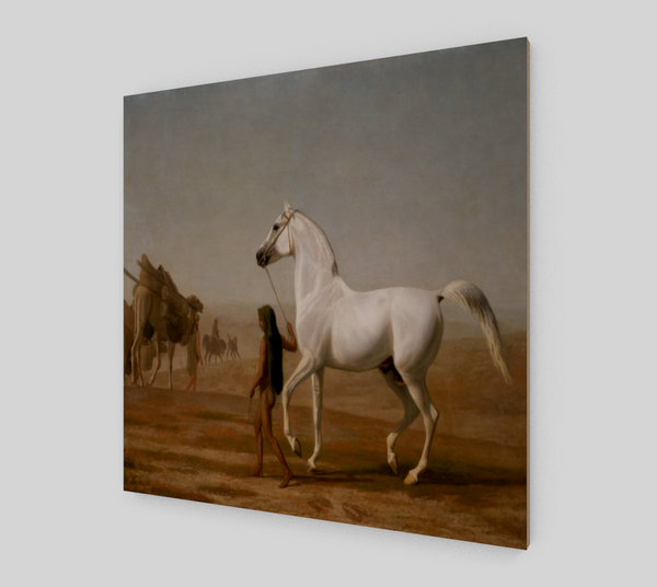 The Wellesley Grey Arabian by Jacques Agasse [Art Reproductions]