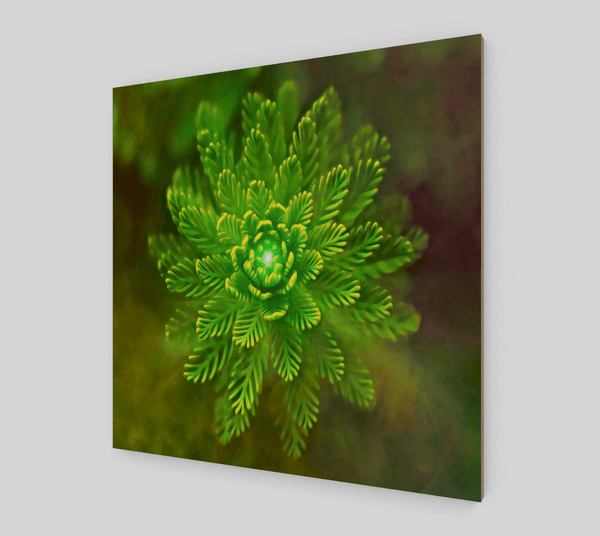 Botanical Green Plant Painting [Fine Art Prints On Canvas] - Fine Art