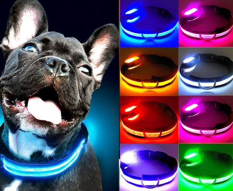 Ovasmart Amazing Dog Led Collar