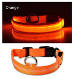 Ovasmart Orange - FREE / L Amazing Dog Led Collar