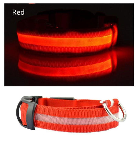 Ovasmart Red - FREE / L Amazing Dog Led Collar