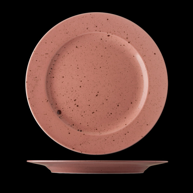 Lifestyle Terracotta Plate 28cm (box of 6)