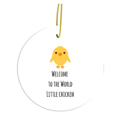 Welcome To The World Little Chicken