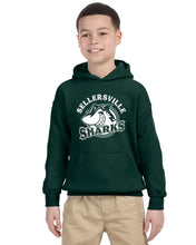 SE Pullover Hoodie, Youth and Adult G185
