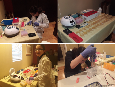 Science-fair-project-home-laboratory
