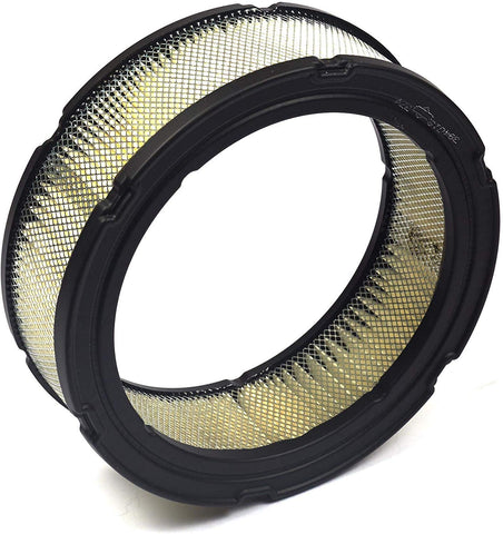 394018s Briggs and Stratton Air Filter