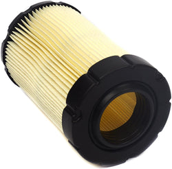 594201 Briggs and Stratton Air Filter 796031