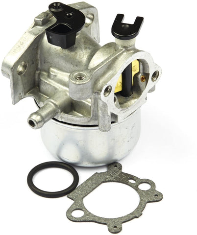 799866 Briggs and Stratton Carburetor Assembly 794304