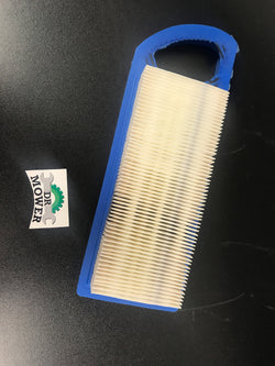 Briggs and Stratton 795115 Air Filter