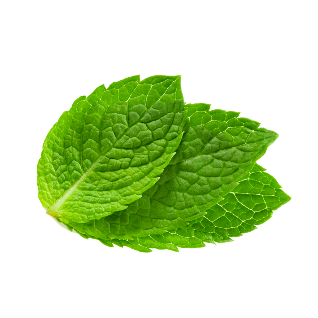 mint leaves as facial cleanser Beauty benefits of mint leaves,mint leaves face pack, mint leaves anti dandruff  hair pack, mint leaves face tonermint leaves for skin, mint.
