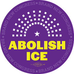 Abolish ICE Button
