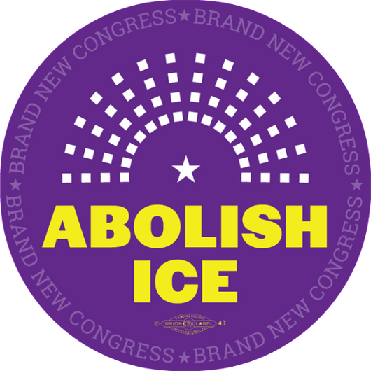 ABOLISH ICE Buttons