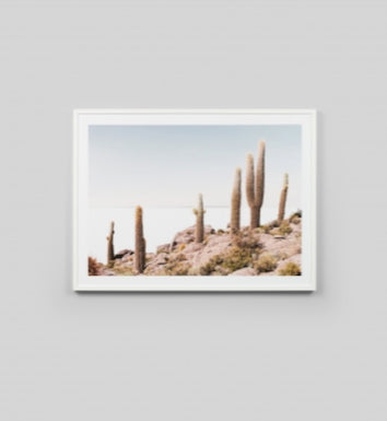 Cactus View Framed Artwork