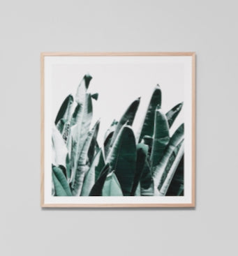 Summer Leaves Framed Artwork