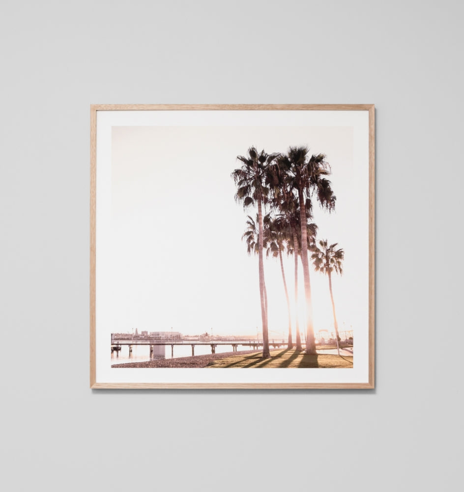 Palm Foreshore Framed Artwork