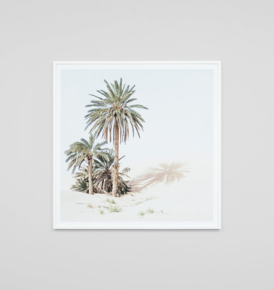 Palm Oasis Framed Artwork