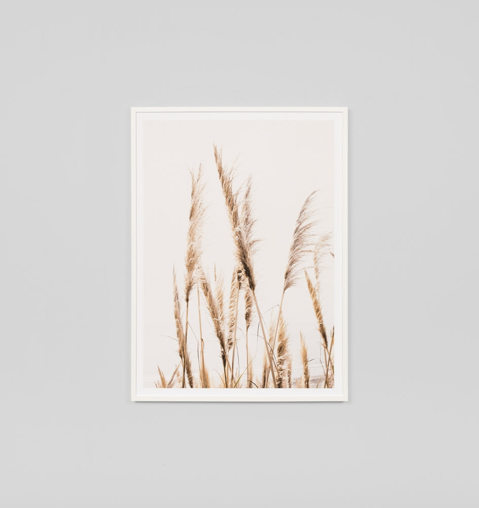 Pampas Grass Framed Artwork