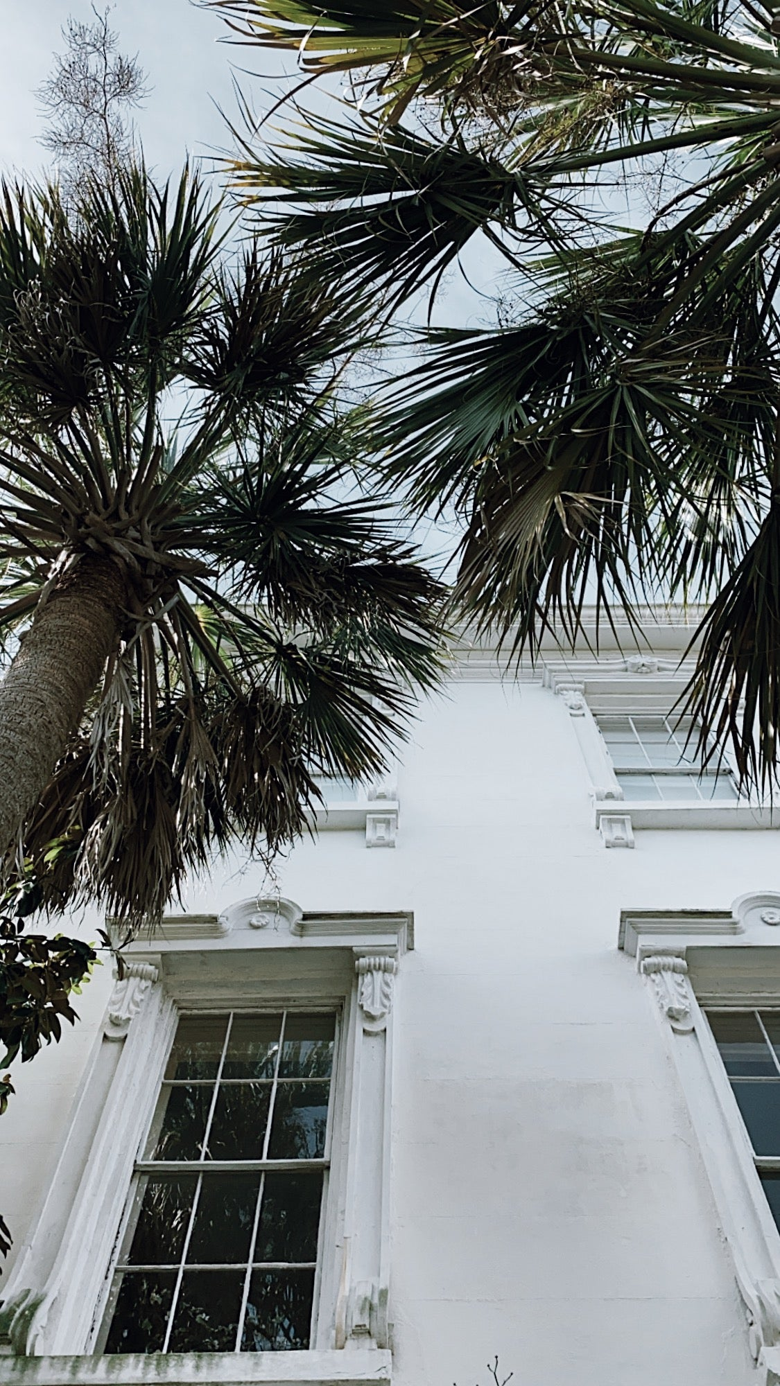 MONTGOMERY COLLECTION X CHARLESTON SOUTH CAROLINA