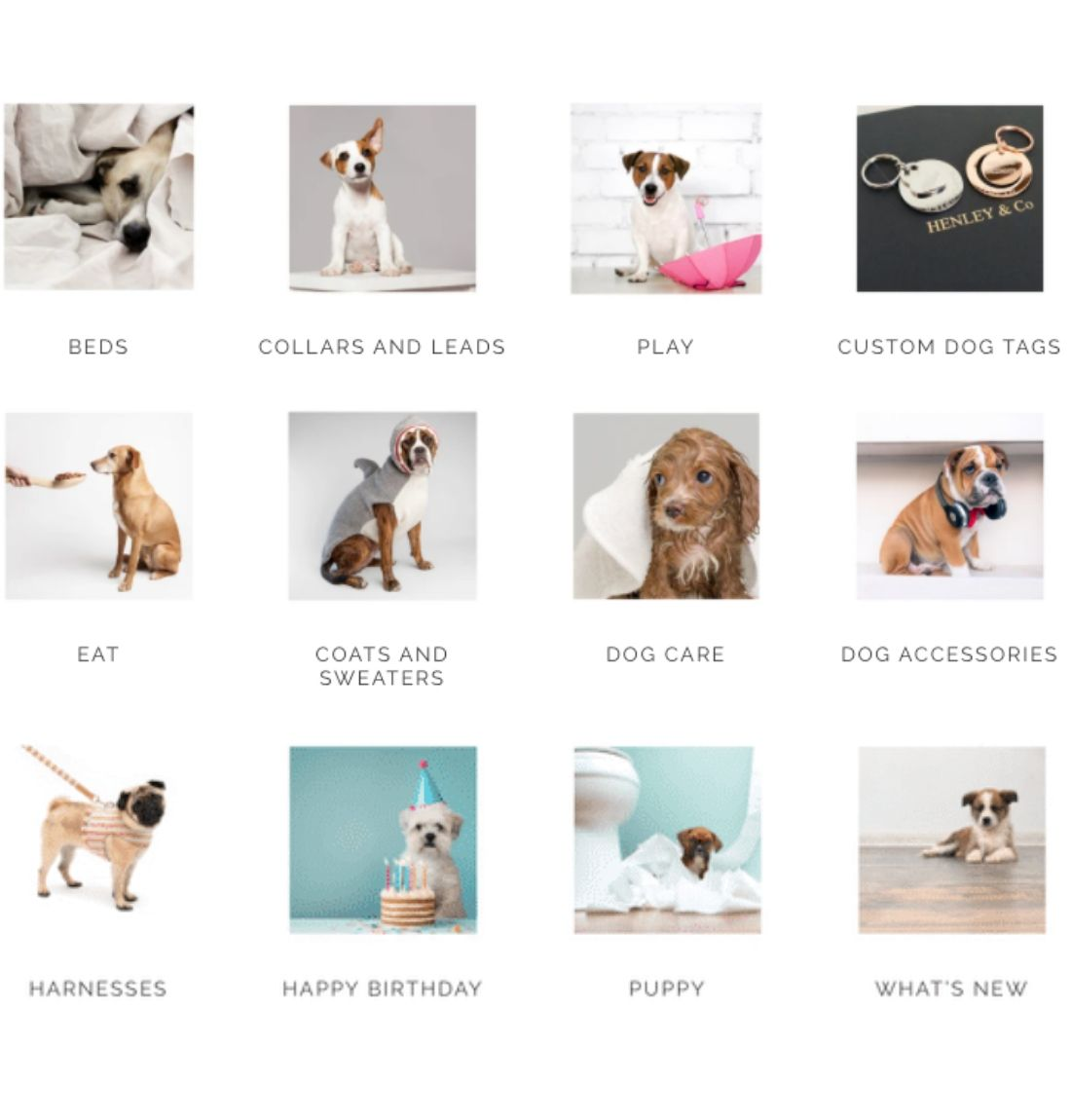 Henley and Co product categories with pictures of cute dogs