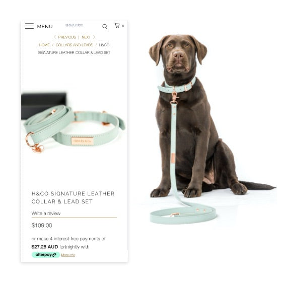 Henley & co signature leather collar & lead set