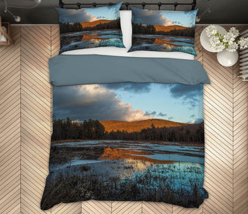 3D Winter Marsh 1034 Jerry LoFaro bedding Bed Pillowcases Quilt