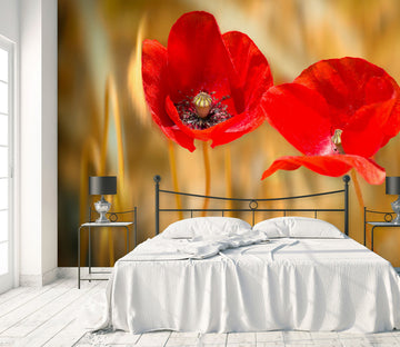 3D Red Flowers 1448 Marco Carmassi Wall Mural Wall Murals