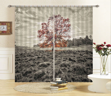 3D Red Tree 063 Assaf Frank Curtain Curtains Drapes
