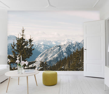 3D Snow Mountain Forest 84 Wall Murals