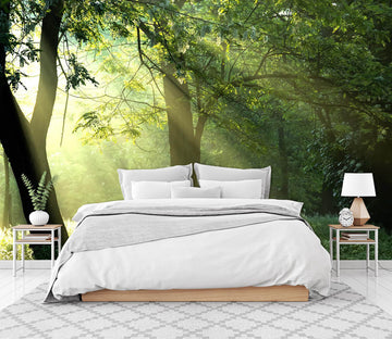 3D Forest Green Grass 065 Wall Murals