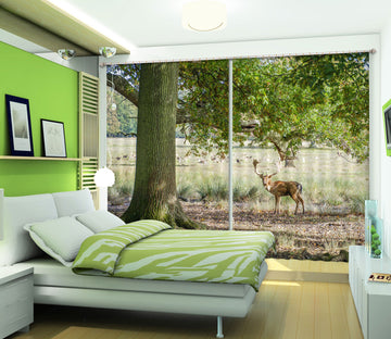 3D Sika Deer Tree 064 Assaf Frank Curtain Curtains Drapes