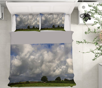 3D Partly Cloudy 1007 Jerry LoFaro bedding Bed Pillowcases Quilt