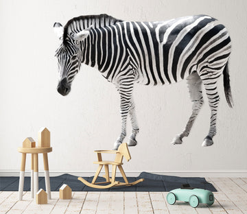 3D Zebra 075 Animals Wall Stickers Wallpaper AJ Wallpaper