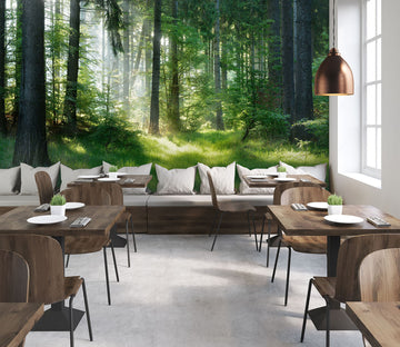 3D Green Forest 245 Wall Murals