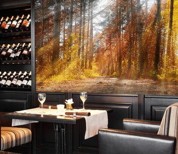 3D Autumn Forest 243 Wall Murals