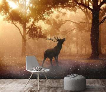 3D Antelope Woods 664 Wallpaper AJ Wallpaper