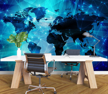 3D Data World Map 1101 Wall Murals