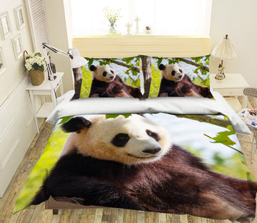 3D Forest Panda 1927 Bed Pillowcases Quilt