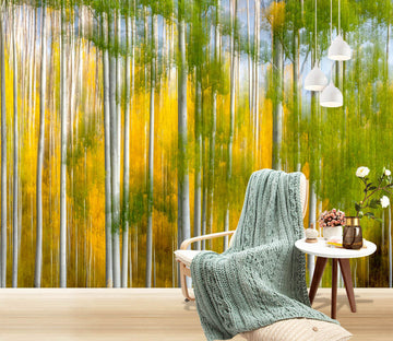 3D Orange Reflection 1438 Marco Carmassi Wall Mural Wall Murals