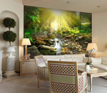 3D Sunshine in the forest 23 Wall Murals