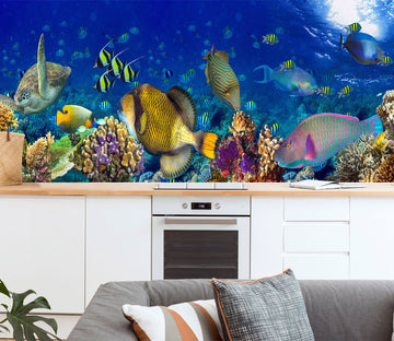 3D The Underwater World 1424 Wall Murals