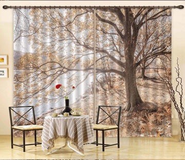 3D Lakeside Tree 069 Assaf Frank Curtain Curtains Drapes