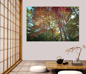 3D Forest Red Leaves 021 Kathy Barefield Wall Sticker
