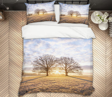 3D Sunshine Tree Shadow 1084 Assaf Frank Bedding Bed Pillowcases Quilt