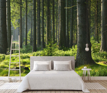 3D Forest Green Grass 064 Wall Murals