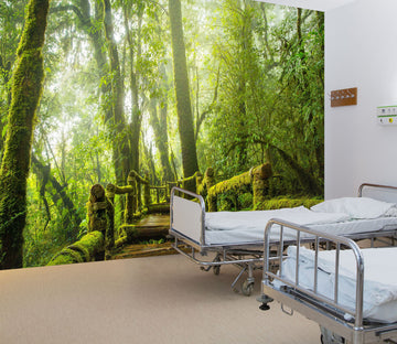 3D Tropical Rain Forest 338 Wall Murals